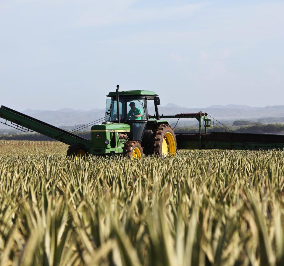 ciągniki rolnicze w gospodarstwie