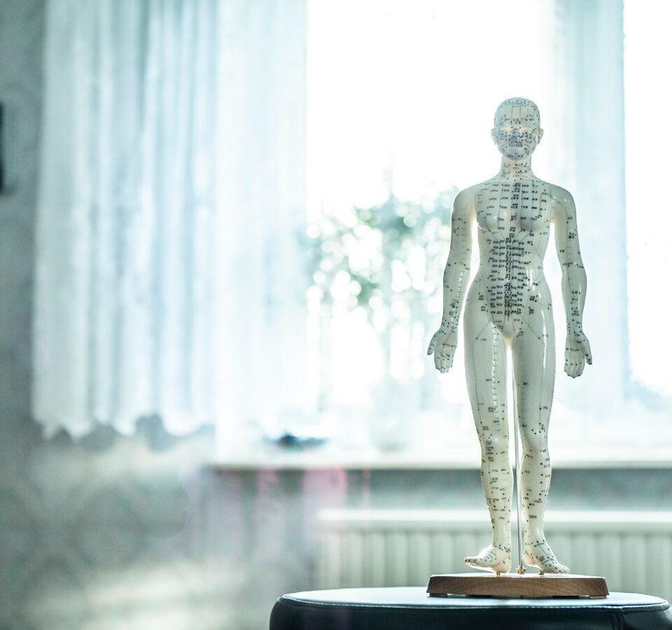 studia osteopatii