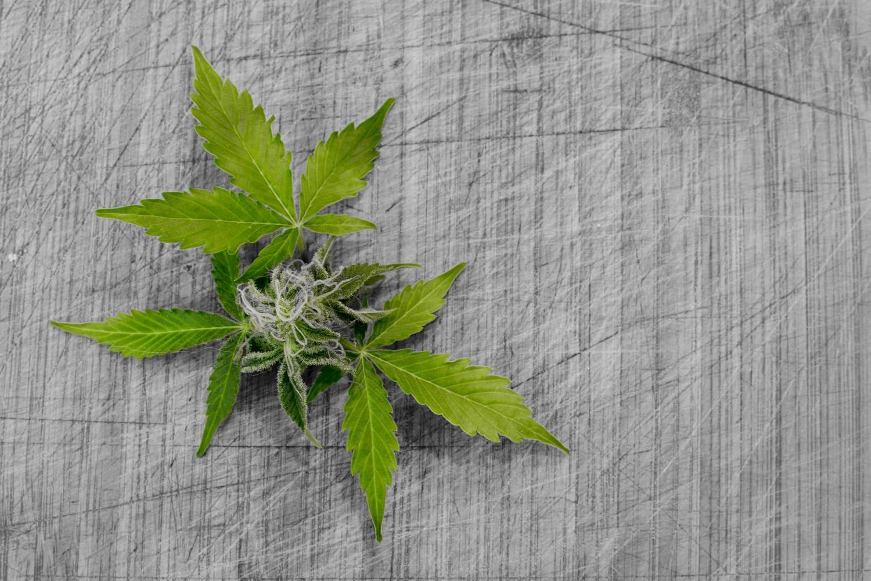 Ile trwa detoks narkotykowy?